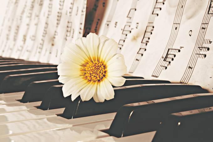 Musical Instrument 3