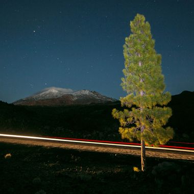 Volcano Teide with some snow  and a pine tree at the front. Teide National Park. Tenerife (Canary Islands)