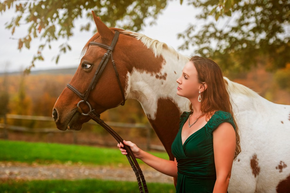 this portrait was captured at Clover Hill Stables