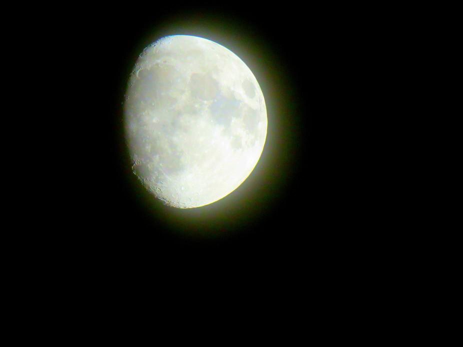 Photo was taken with Canon SX60HS set on vivid photo