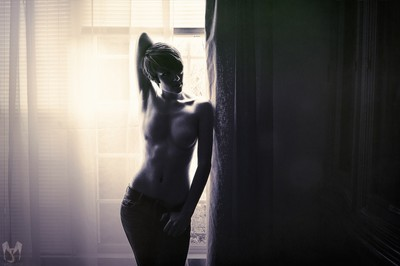 Window Silhouette v2