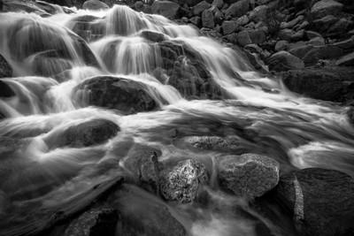 Aluvial Fan BW - Rocky Mountain National Park, 2016Rock Mountain National Park(_AM21826)