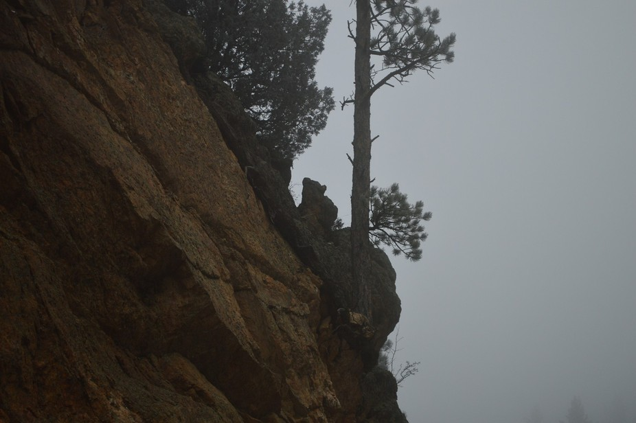 Bear-shaped rock in Golden Gate Canyon, west of Denver, Colorado