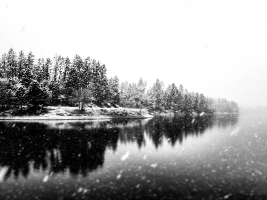 Lynx Lake, Prescott Az in b&w