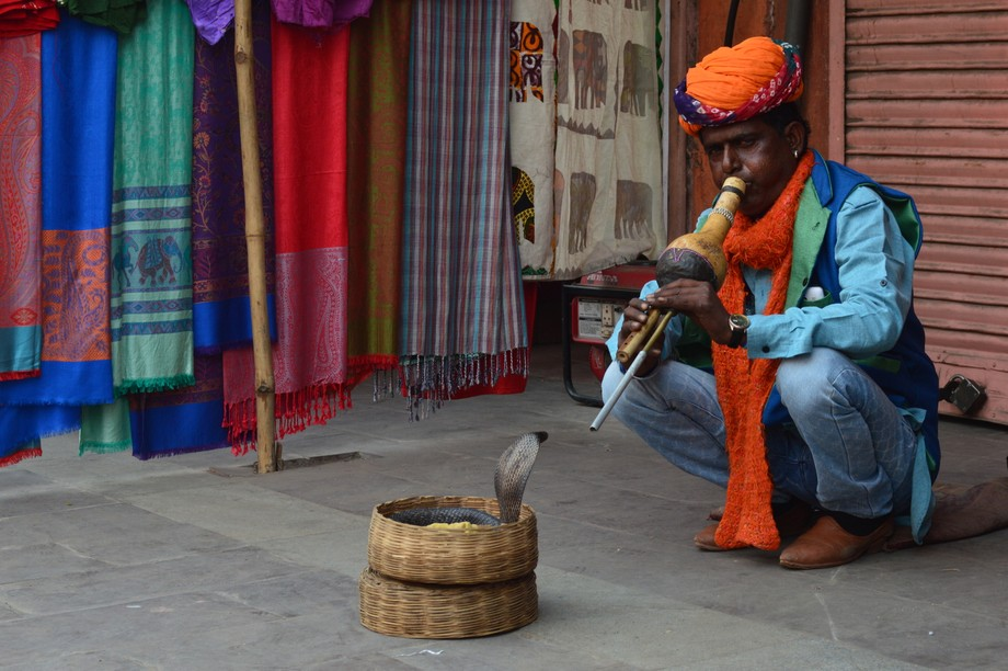 While in India one year ago, I stumbled upon this person who was dressed in a traditional outfit,...