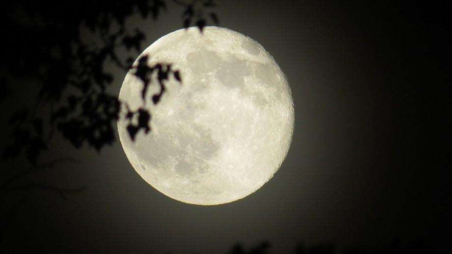 Full Moon in June 2014