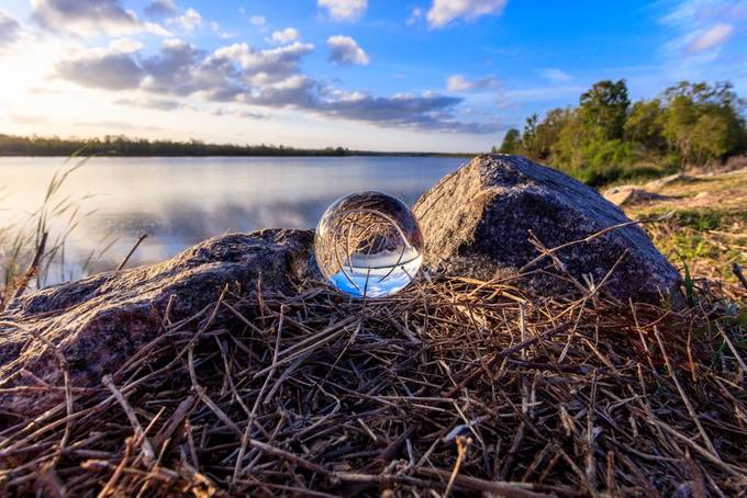 Taken at Bushy Park Boat Landing in Goose Creek, South Carolina taken on the fresh water side of the boat landing.