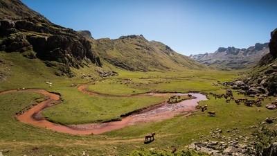 A wild valley