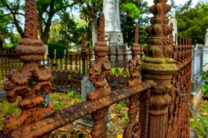 Taken ay Magnolia Cemetery in Charleston, South Carolina. This is a very peaceful and beautiful location. It's a great place to reflect on life and take photos.