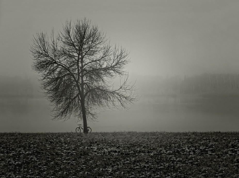 Fotografía en un parque de Leganes Madrid  días de niebla