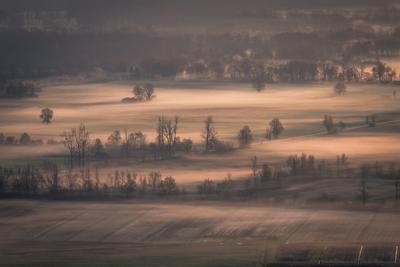 Morning on Ljubljana Marsh
