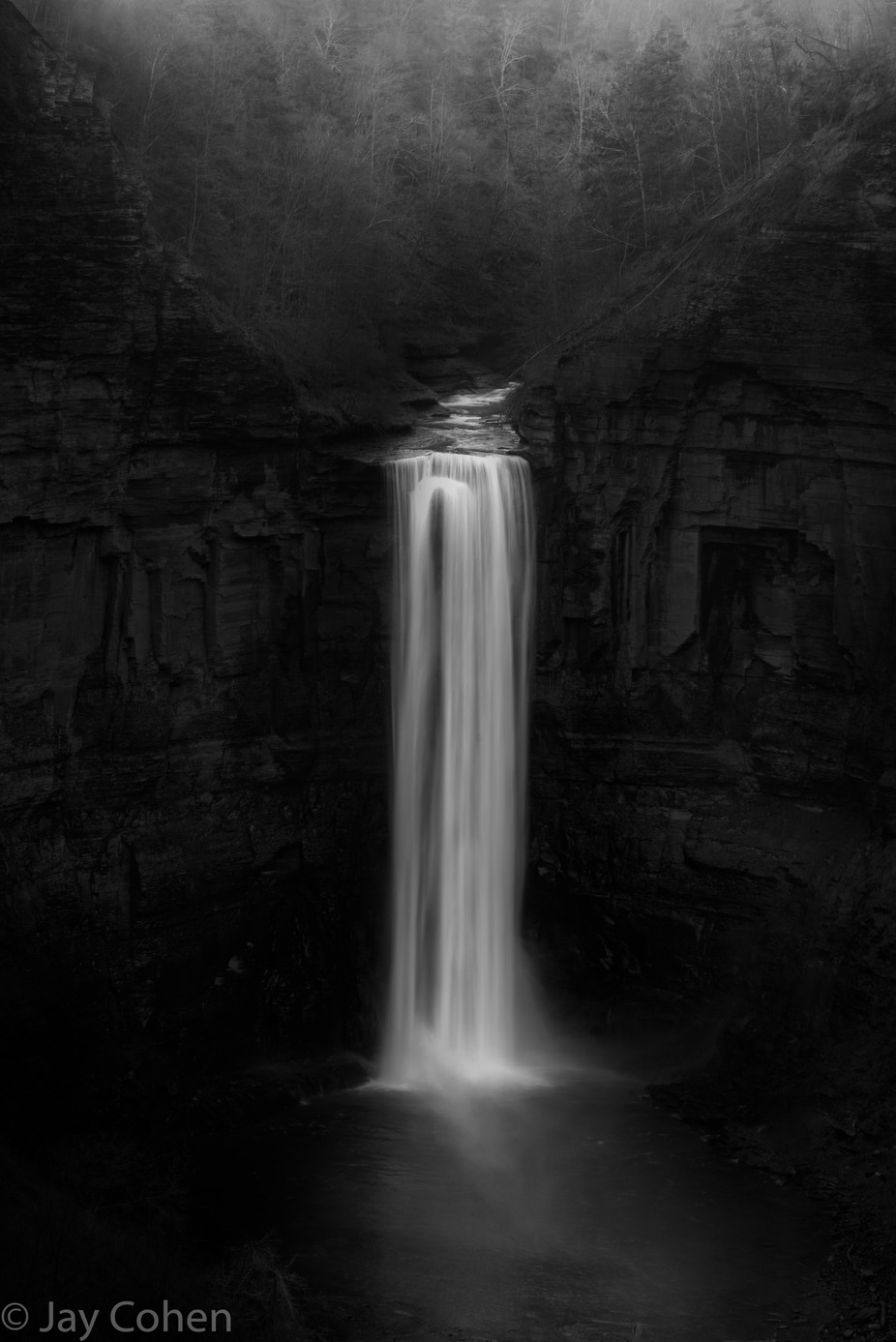 Falling by jaycohen - Black And White Landscapes Photo Contest