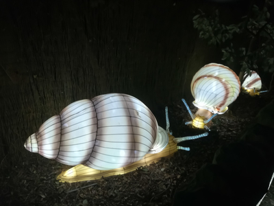 11 Giant snail lanterns Edinburgh Zoo Edinburgh Scotland UK