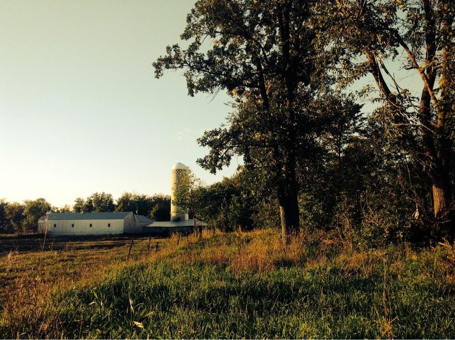 Grandad's Farm