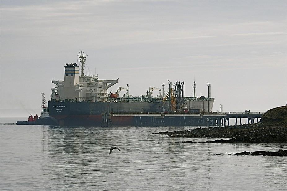 "A quick shot of the oil Tanker ""Alfa Italia"" in port at The Flotta Oil Terminal..."