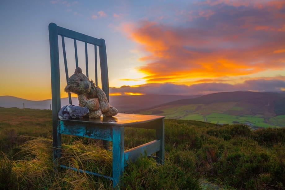 Chair Bear