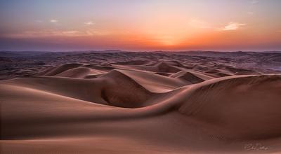 Blue Hour in Desert