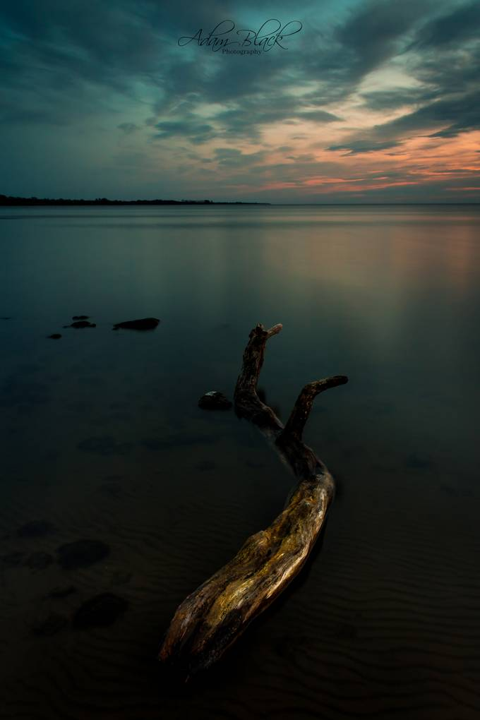 Log on the Lough