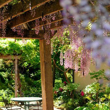 Inviting sunlit patio
