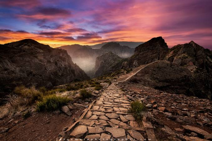 Endless path by JorgeMaiaPhotographer - Image Of The Month Photo Contest Vol 32