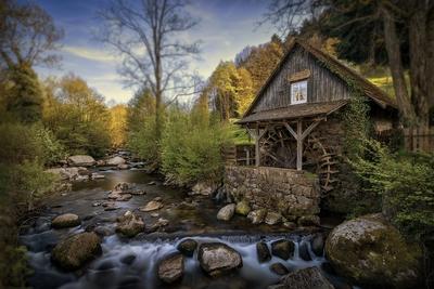 Autumn Water Wheel