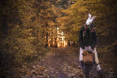 The Rabbit #1