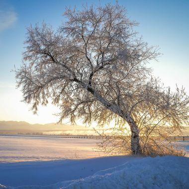Somers Winter Sunrise