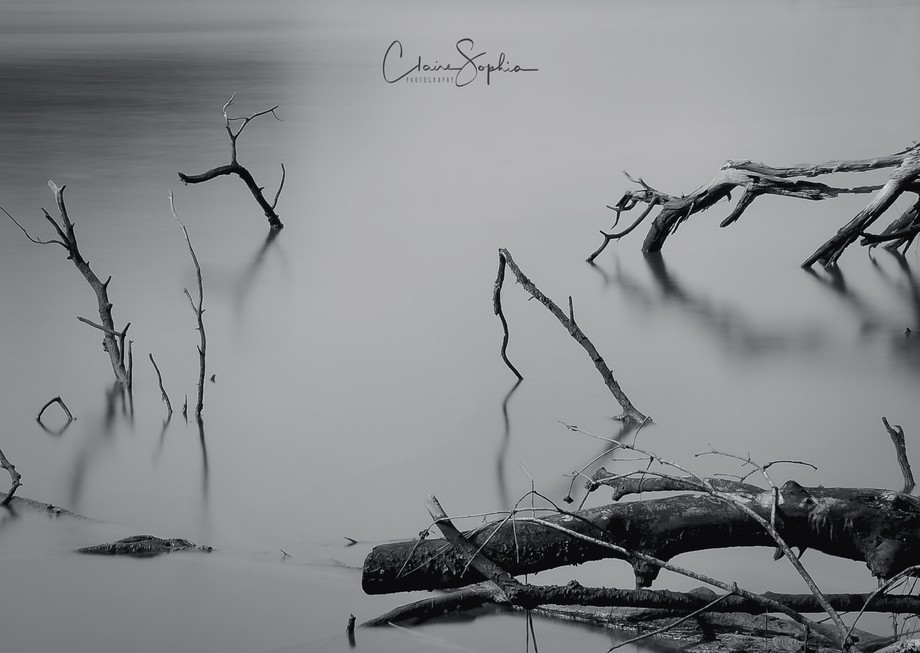 Photography by Claire Sophia.