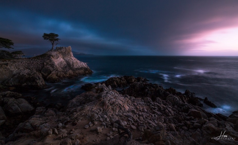 The last light on Lone Cypress.