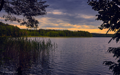 a forest lake at sunset...