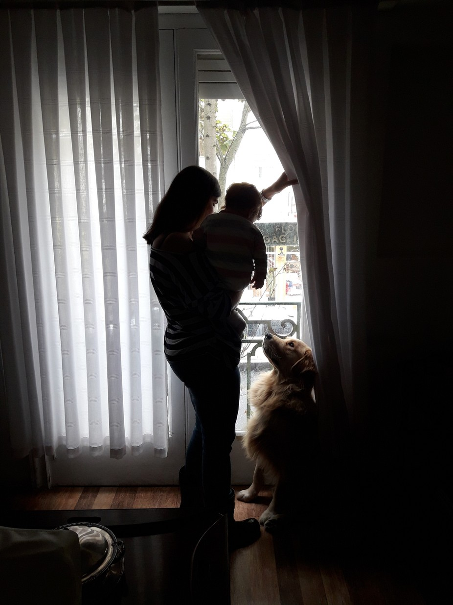 The dog is near the baby, and take care of her, since she was born. That day was raining.
