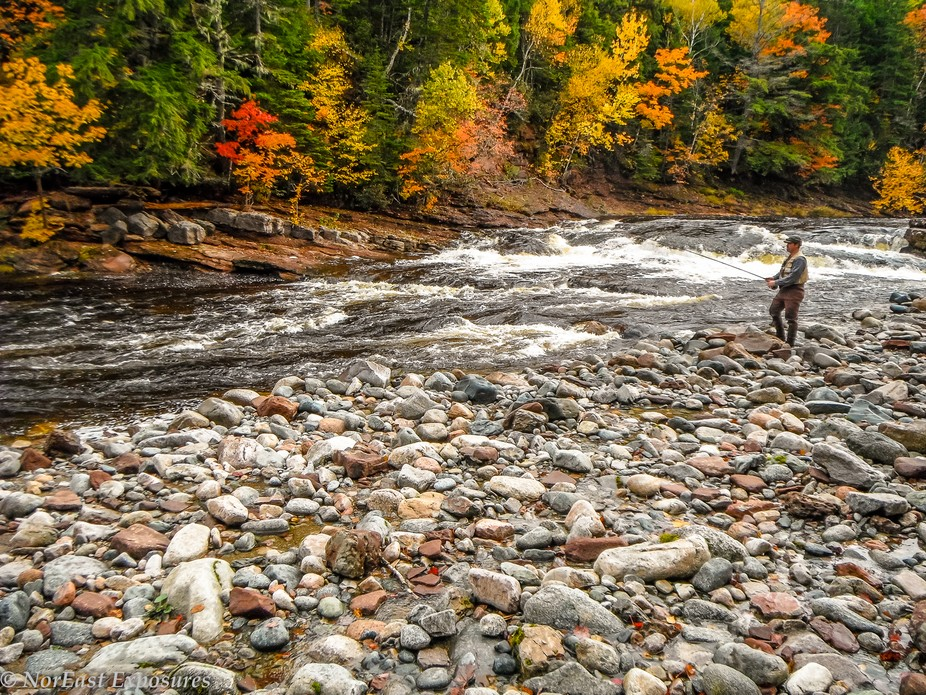 Fall fishing for Atlantic Salmon in Cape Breton is among one of y favorite ways to spend a day