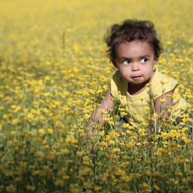 Baby Olive in a sea of yellow