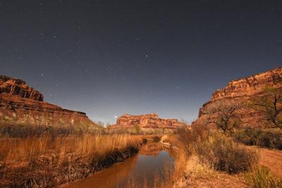 Desert Stream in Moon Light