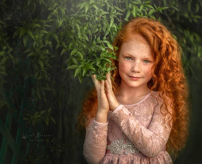 Ginger by LissetPerrier - Image Of The Month Photo Contest Vol 33