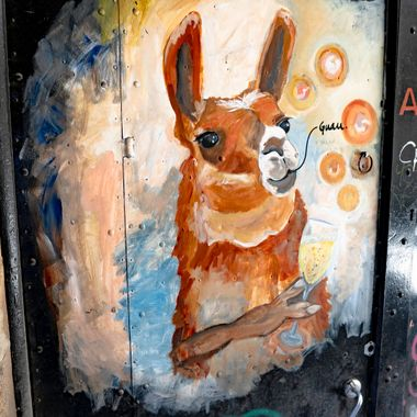 On a recent trip to Barcelona Spain I found myself fascinated by the graffiti street artist had painted on door throughout the city.