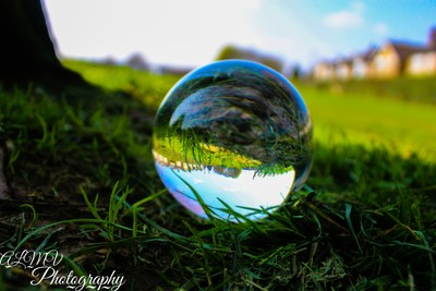 Spring Through a Lensball