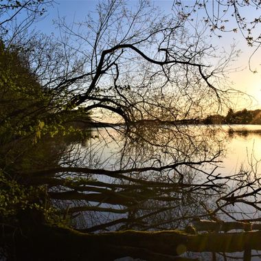 Last Burst of Evening Sun on my Local Loch.