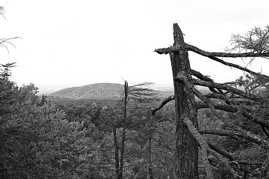 Hanging Rock State Park in Danbury, NC