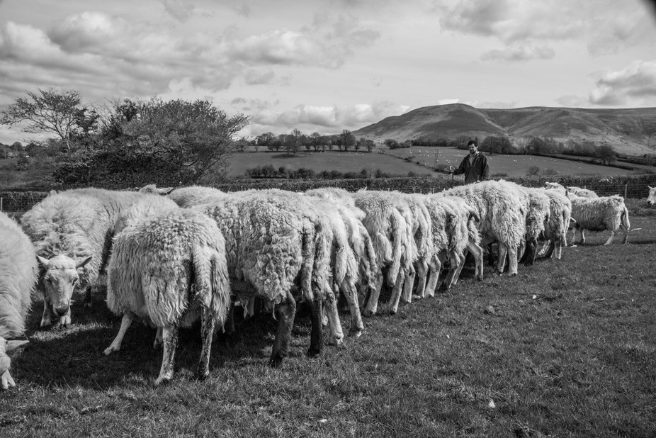 Work for a year-round project following life of a young Welsh farmer. Follow the story on my webs...
