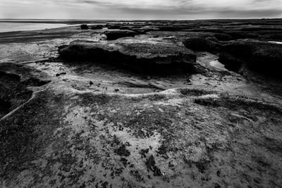 #124/365 Landscape
