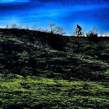 Lone rider!