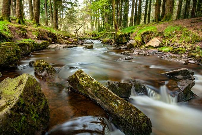 River Life by David-MM - Streams In Nature Photo Contest