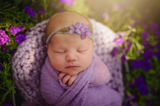 lilac baby by Andreamartinphoto - Shades Of Purple Project