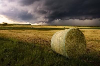 Possum Kingdom Invasion - North Texas Storm Chasing