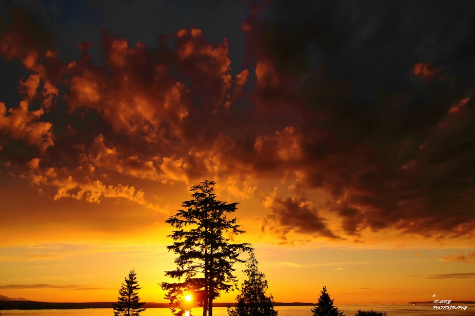 Another evening and another Whidbey Island Sunset looking west toward Port Townsend and to the ri...
