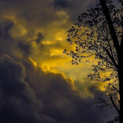 Harbinger. High winds, trees down, no power.  #trailsend #stormysky #stormclouds #eveningsky #sunset #harbinger #outthebackdoor #backyardnature #highwinds #treesdown #nopower #canon_photos #canonglobal #canonwhatelse #got__greatshots #ethereal_moods #marv