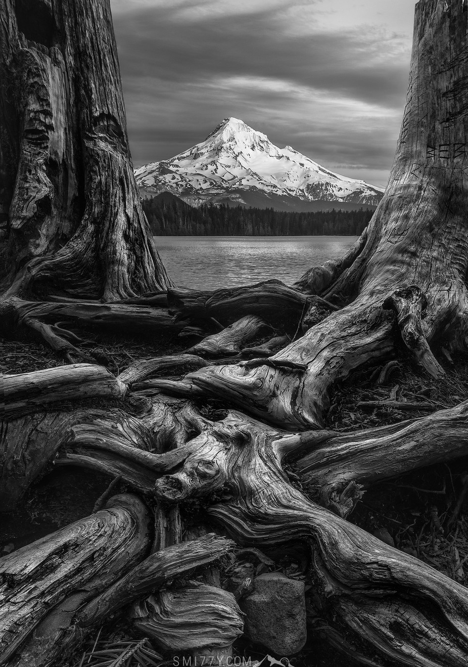 This is Oregon by Smi77y - Image Of The Month Photo Contest Vol 33