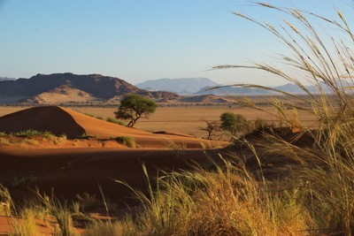 Just Namibia