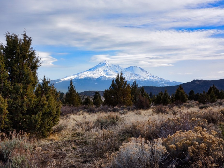 A cold spring day, I was in Southern Oregon driving south on my way to Central California...when,...